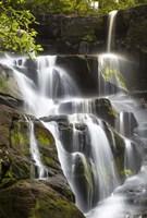Smoky Mountains Waterfall Fine Art Print