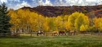 Colorado Farm Fine Art Print