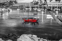 Red Boat Monterey Fine Art Print