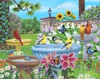 Birdbath Garden Fine Art Print