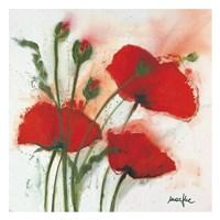 Mohnblumen im Wind I Fine Art Print