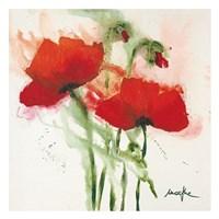 Mohnblumen im Wind II Fine Art Print