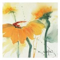 Tournesol V Fine Art Print