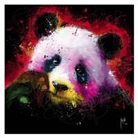 Panda Pop Fine Art Print