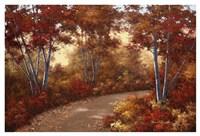 Golden Birches Fine Art Print