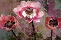 Anemone Suite Fine Art Print