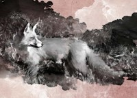 Fleeting Fox Fine Art Print
