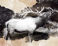 Forest Elk Call Fine Art Print
