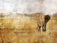 Golden Savanna Elephant Fine Art Print