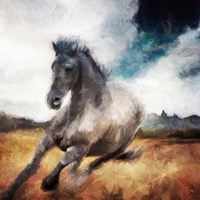 Running Black Horse Fine Art Print