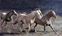 Rustic Running Horse Herd Fine Art Print