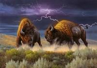 Thunderstruck Fine Art Print