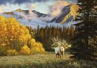 Valley of Gold Fine Art Print