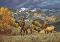 Mountain Heir Fine Art Print