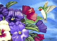 Hummingbird and Pansies Fine Art Print