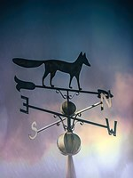 Rain On The Old Fox Weather Vane Fine Art Print