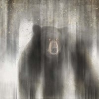 Antique Wildlife bear Fine Art Print