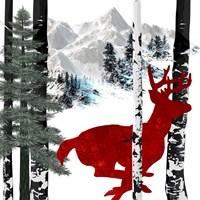 Winter Deer Fine Art Print