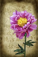 Background Peony 2 Fine Art Print