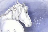 Winter Horse Fine Art Print