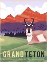 Grand Teton Fine Art Print