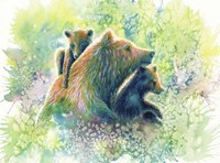 Mother Grizzly Bear Fine Art Print