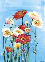 Poppies On Blue Fine Art Print
