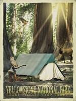 Redwood Camping Fine Art Print