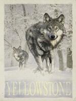 Wolf Snow Fine Art Print