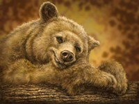 Sleepy Bear Fine Art Print