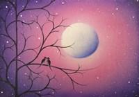 Midnight Callings Fine Art Print