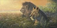Lion Queen Fine Art Print