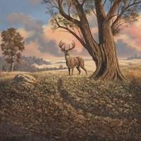 Loners Fine Art Print