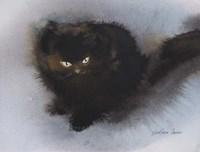 Black Kitten Fine Art Print