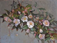 Camellia Quintessence Fine Art Print