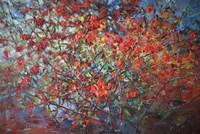 Japonica Blossoms Fine Art Print