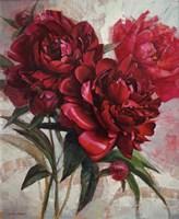 Red Peonies Fine Art Print