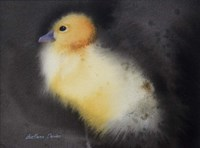 Ugly Duckling Fine Art Print