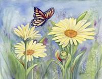 Butterfly Daisy Fine Art Print