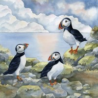 Puffins on Cliff Fine Art Print