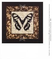 Classical Butterfly II Fine Art Print