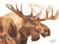 Moose Be Single Fine Art Print