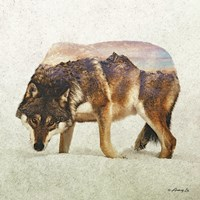 Wolf - North Fine Art Print