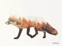 Norwegian Woods Fox Fine Art Print
