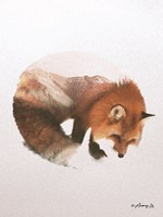 Snow Fox Fine Art Print