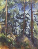 Pines, 1896-99 Fine Art Print