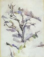 The Oak Fine Art Print