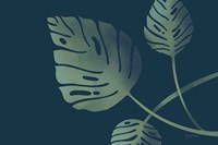Monstera V Fine Art Print