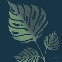 Monstera IV Fine Art Print