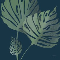 Monstera III Fine Art Print